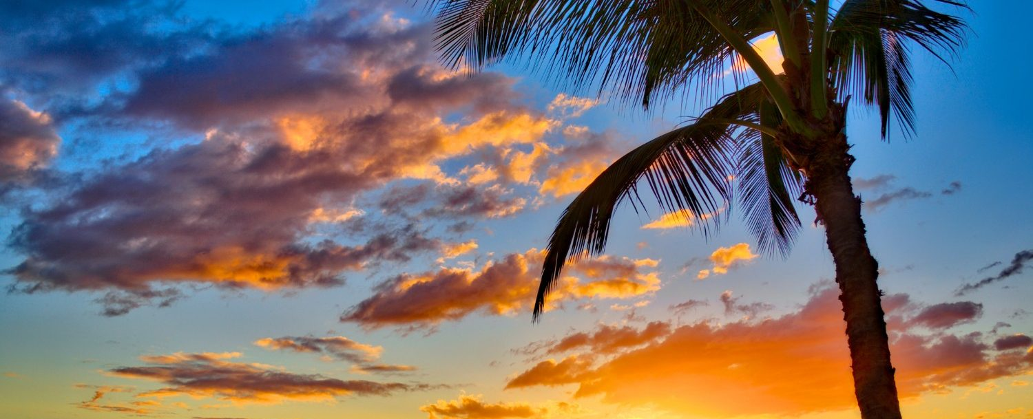 Sunset view of Kamaole Beach Park with palm tree overlooking the ocean and orange sky