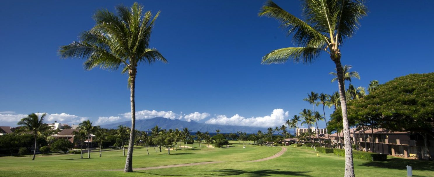 Kaanapali golf course, view of the palm tree and volcano in the distance | Best Maui Golf Courses