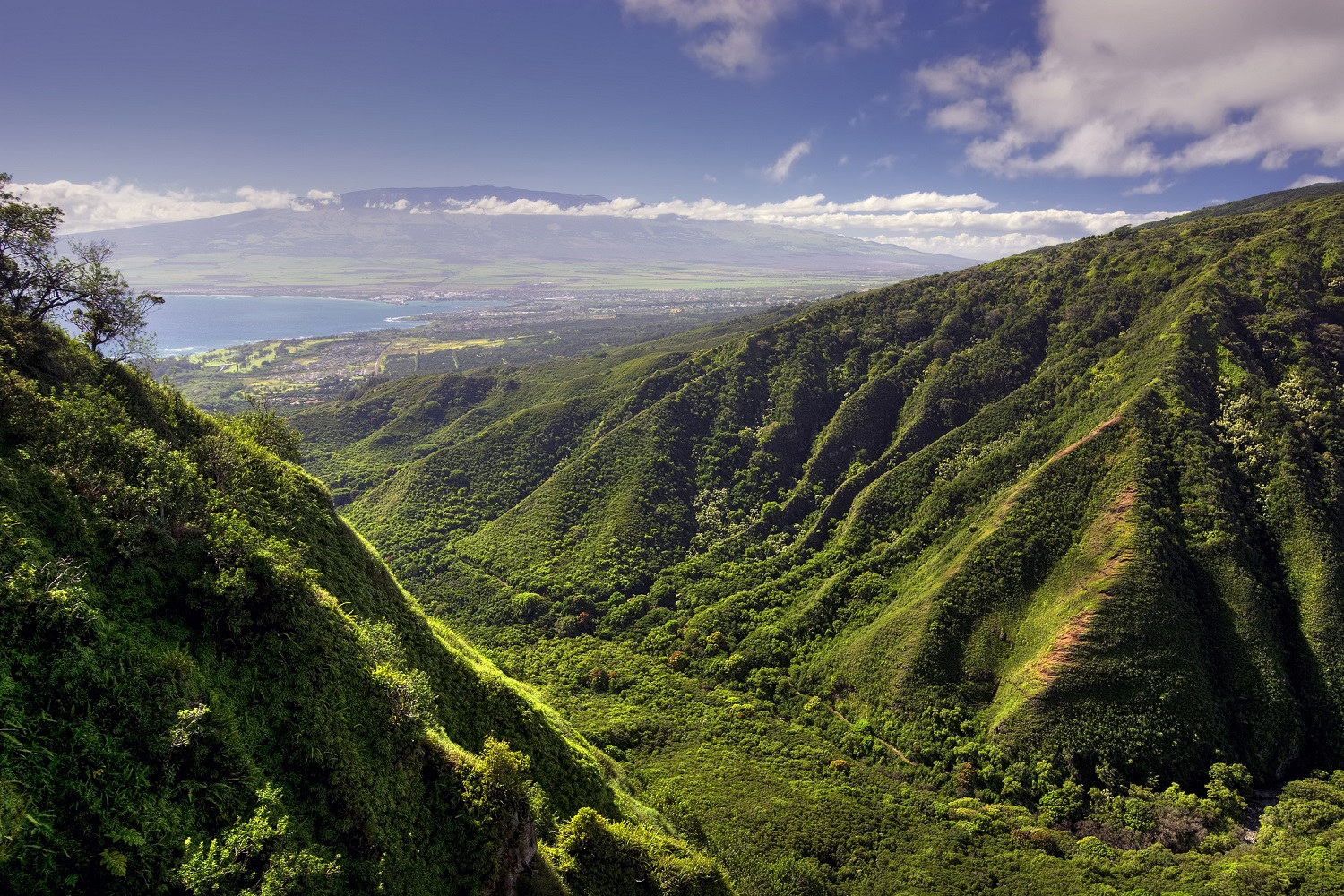 Here Are 3 of the Best Maui Scenic Drives   PMI Maui