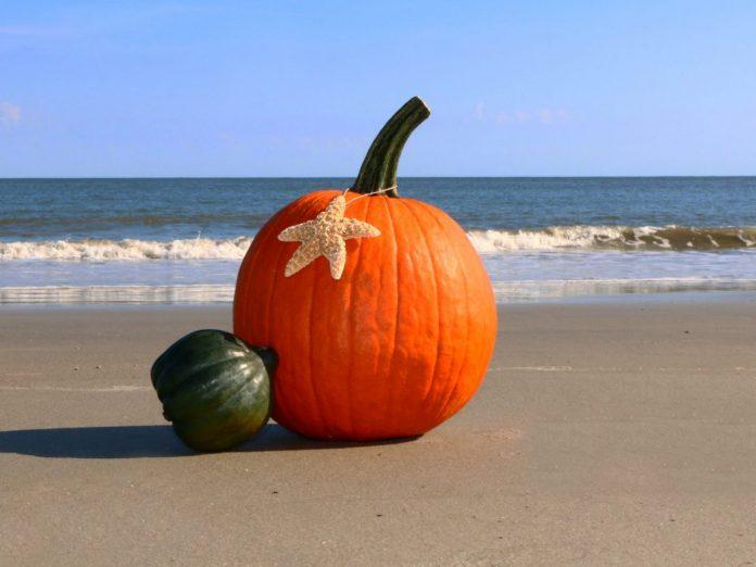Pumpkin on the beach | Maui in October